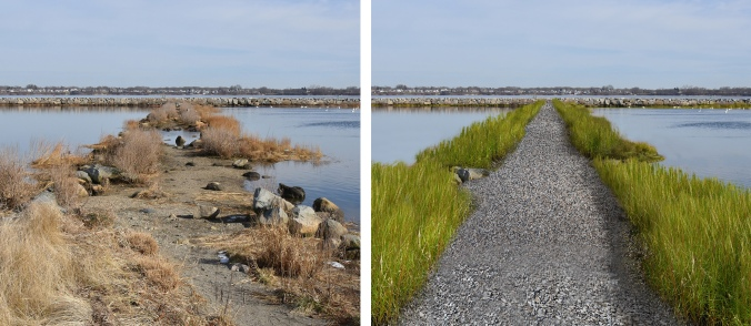 The current state of the Salter Grove causeway (left) and after proposed repairs to improve safe access (right). © FoSG/Jason Major