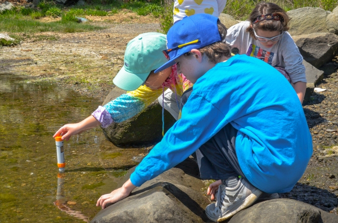 Students from St. Peter School test the salinity of Salter Grove's waters, May 23, 2016