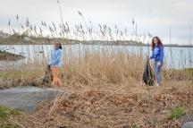 Shoreline Cleanup April 23-3