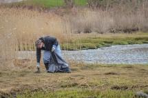 Shoreline Cleanup April 23-4